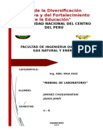 308937432-Manual-de-Laboratorio-Quimico.docx