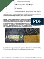 ¿Existe Riesgo de Incendio en Las Plantas Fotovoltaicas