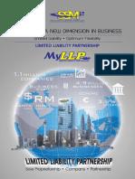 LLP_flyer