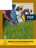 Investing in rice research and innovation for Africa