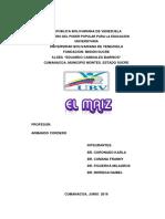 EL MAIZ.pdf