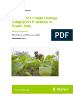 Review of Climate Change Adaptation Practices in South Asia