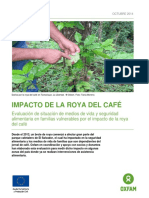The Impact of Coffee Rust