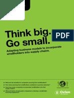 Think Big Go Small
