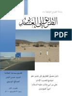 الطريق إلى الغدير