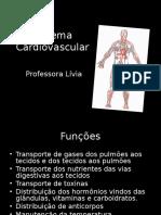 Sistema Cardiovascular230220110942