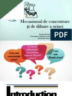 Mecanism Diluare-concentrare Urina