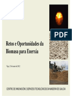 Retos e Oportunidades Da Biomasa