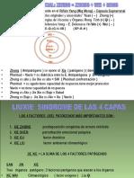 SINDROME DE LAS 4 CAPAS.ppt