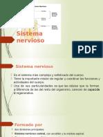 Sistema Nervioso y Sistema de Organos de Los Sentidos