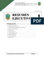 c - Resumen Ejecutivo2