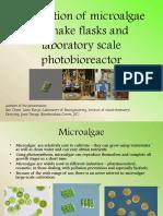 Lab Algae Simplified