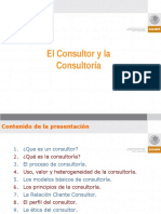 El Consultor y La Consultoria
