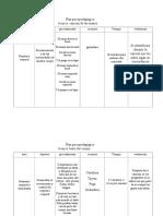 4.Plan Psicopedagógico