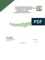Fotomorfogénesis
