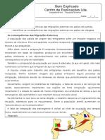 Ficha de Trabalho - Migrações Externas (1)