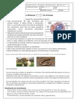 metazoa edicao 1.pdf