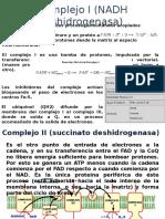 Complejo II(Succinato Deshidrogenasa)[1]
