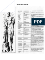 Hercules Muscle Chart Front.pdf