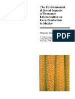 The Environmental and Social Impacts of Economic Liberalization on Corn Production in Mexico
