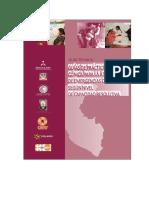 12.GUIA_DE_PRACTICA_CLINICA_PARA_LA_ATENCION_DE_EM.OBSTETRICAS.2007.MINSA.pdf