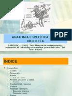 anatomía especifica de la bicicleta