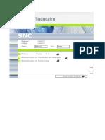 Demonstrações Financeiras (SNC).xls