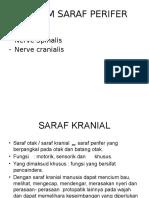 Sistem Saraf Perifer-lucky