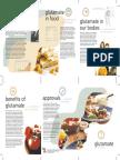 Glutamate_Information_Leaflet.pdf