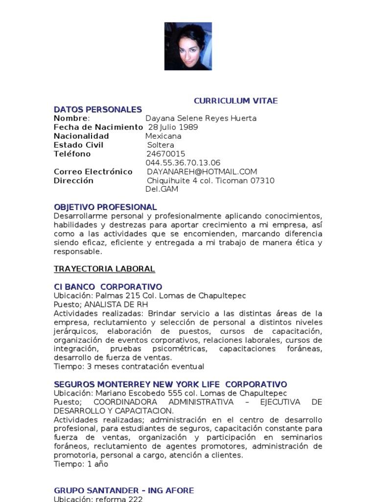 Dorable Curriculum Vitae Del Administrador De Seguros Galería ...