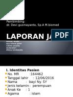 Lapja_perina Obs.muntah 12