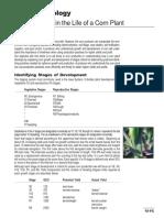 CriticalStages.pdf