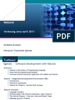 Software Development With Natural