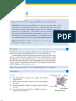 kelm303.pdf