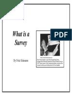 What is a survey.pdf