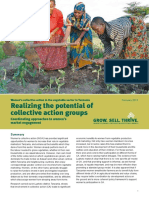 Women's Collective Action in the Vegetable Sector in Tanzania