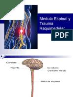 Medula Espinal y Trauma Raquimedular