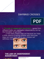 dihybrid notes mb