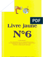 Livre jaune N°6