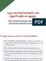 Agentes Bacterianos Con Significado en El Agua de Uso y Consumo