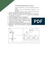 Taller de Refuerzo Biomoléculas y Célula