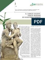 CARRIZO.pdf