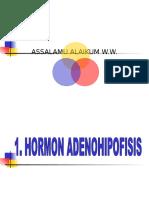 10 Adenohipofisis- h Pertumbuhan-prl