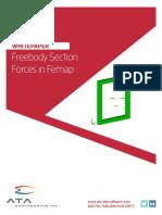 Femap-Free-Body-Section-Cuts.pdf
