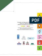 Coleção Est Temáticos ODM Apresentação Pn000001