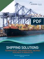 Shipping_report_2010.pdf
