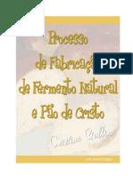 Fabricação de Fermento Natural e Pão de Cristo - Documentos Google.pdf