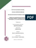 Tesis - Estudio de la participacion del oxido nitrico en los efectos relajante y contractil....pdf