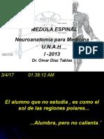 1 Medula Espinal1