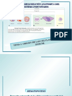 Organización anatómica del sist.inmune, tema 1-2009.